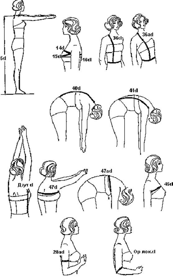 Схема измерений фигуры в